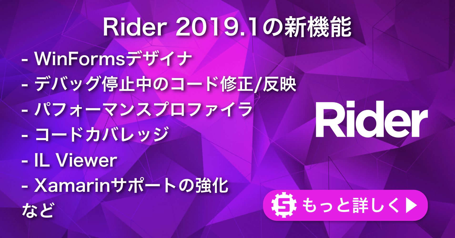 Rider 2019 1の新機能   株式会社サムライズム